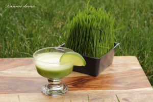 Wheatgrass - pšeničná tráva