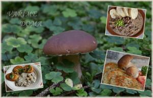 houby-recepty