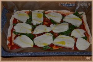 Pizza na plech s mozzarellou a rajčaty – před upečením